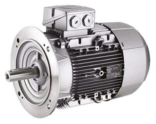 General view of the motor Siemens series 1LE